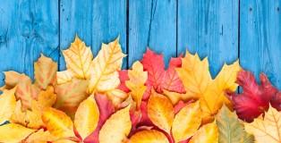 autunno in tavolo