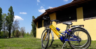 in bici al barchessone